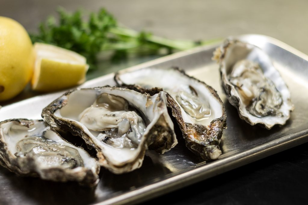 fort-h-muiden-oesters